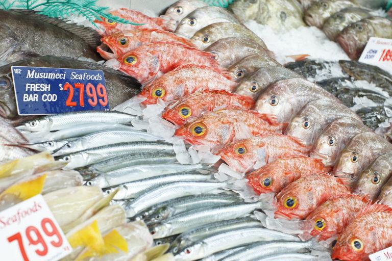 Manfaat Makan Ikan dan Panjang Usia